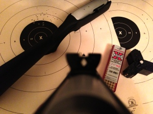 Ruger 10/22 Takedown iron sights